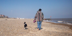 Rosie Border Collie Walking Lowestoft Beach