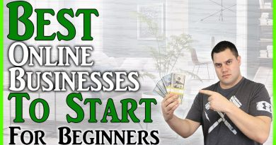 Best Online Businesses To Start For Beginners