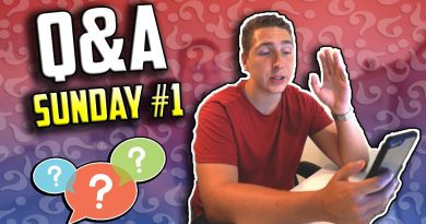 NEW Series, Employees, Mentorship & Daily Routine - Q&A Sunday #1
