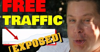 31 Free Traffic Sources For Your Website - REVEALED To Make Money Online