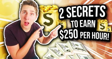 How To Earn $250 Per Hour From Home! (2 SECRETS) 💰