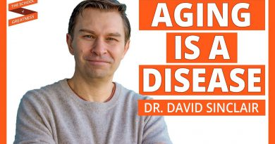 Live A Longer Life and Reverse Aging | David Sinclair and Lewis Howes