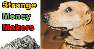 10 Strange Ways People Are Making Money Online