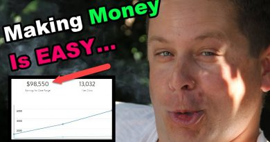 $300 A Day - Making Money Online Is Flippin Easy!