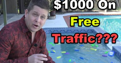 I Spent $1,000 On Free Traffic - SEO Rankings