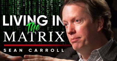 LIVING IN THE MATRIX: Will It Ever Be Possible To Create A Simulation? | Sean Carroll On London Real