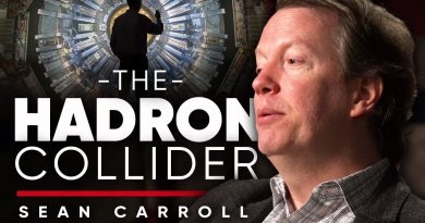 THE LARGE HADRON COLLIDER: The Power Of Understanding The World | Sean Carroll On London Real