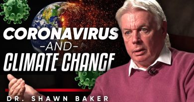 "CORONAVIRUS & CLIMATE CHANGE: ""The Way The Economic System Is Being Shut Down Is Suicide"" David Icke"