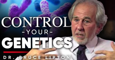THE ENVIRONMENT CONTROLS YOUR CONSCIOUSNESS: Dr. Bruce Lipton's Explanation Of What Epigenetic's Is