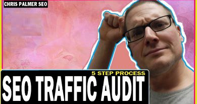 How To SEO Audit A Website Traffic Drop