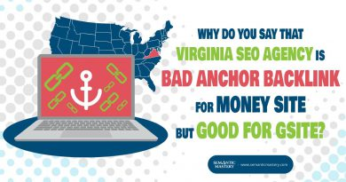 Why Do You Say That Virginia SEO Agency Is Bad Anchor Backlink For Money Site But Good For Gsite?