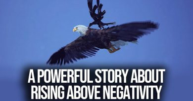 A Powerful Story About Rising Above Negativity (THE EAGLE and CROW)